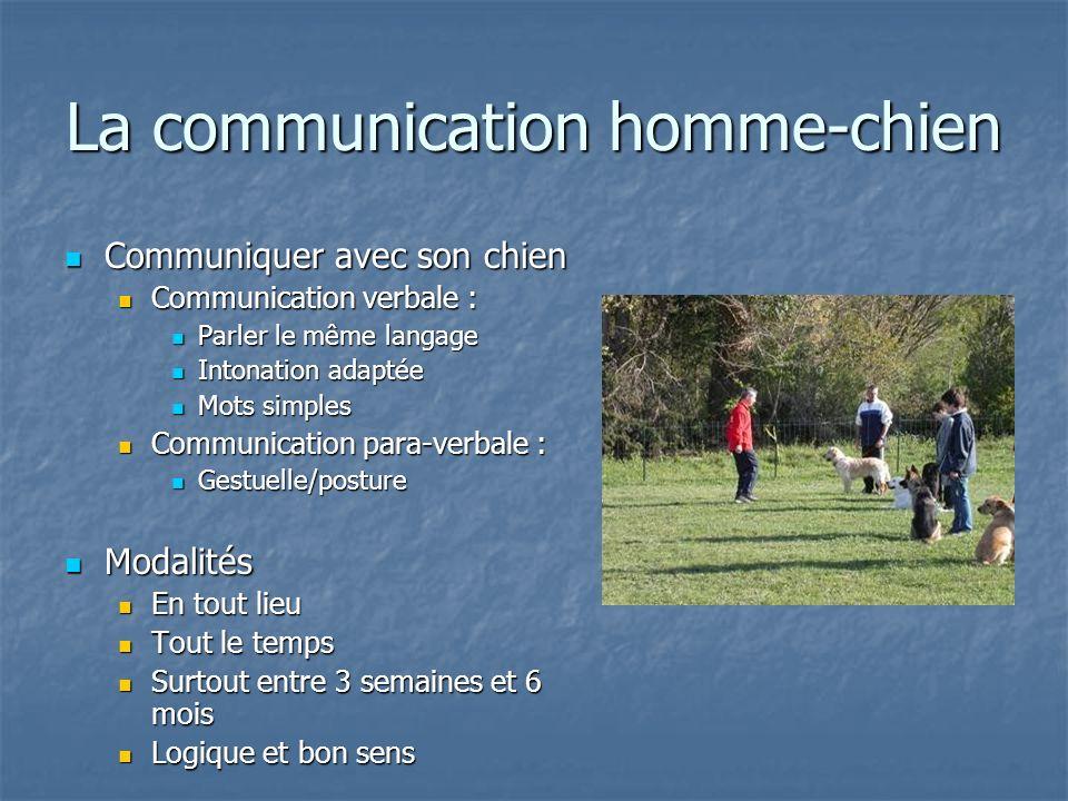 Communiquer avec son chien Communiquer avec son chien Communication verbale : Communication verbale : Parler le même langage Parler le même langage In
