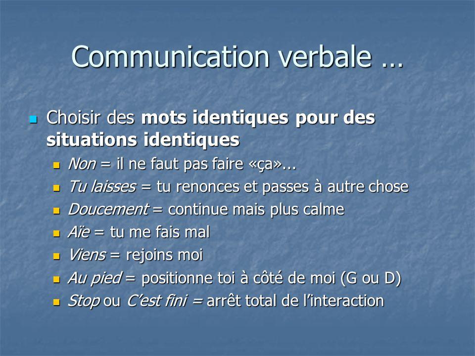 Communication verbale … Choisir des mots identiques pour des situations identiques Choisir des mots identiques pour des situations identiques Non = il
