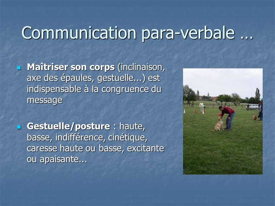 Communication para-verbale … Maîtriser son corps (inclinaison, axe des épaules, gestuelle...) est indispensable à la congruence du message Maîtriser s