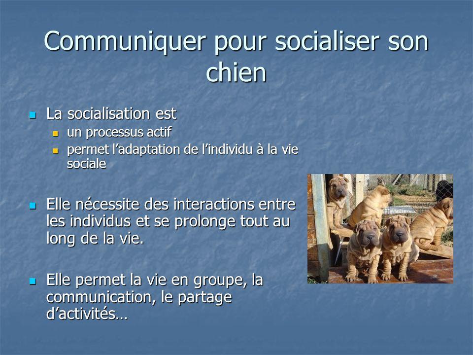 Communiquer pour socialiser son chien La socialisation est La socialisation est un processus actif un processus actif permet ladaptation de lindividu