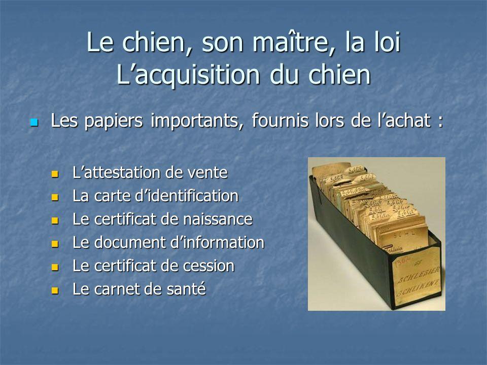 Le chien, son maître, la loi Lacquisition du chien Les papiers importants, fournis lors de lachat : Les papiers importants, fournis lors de lachat : L