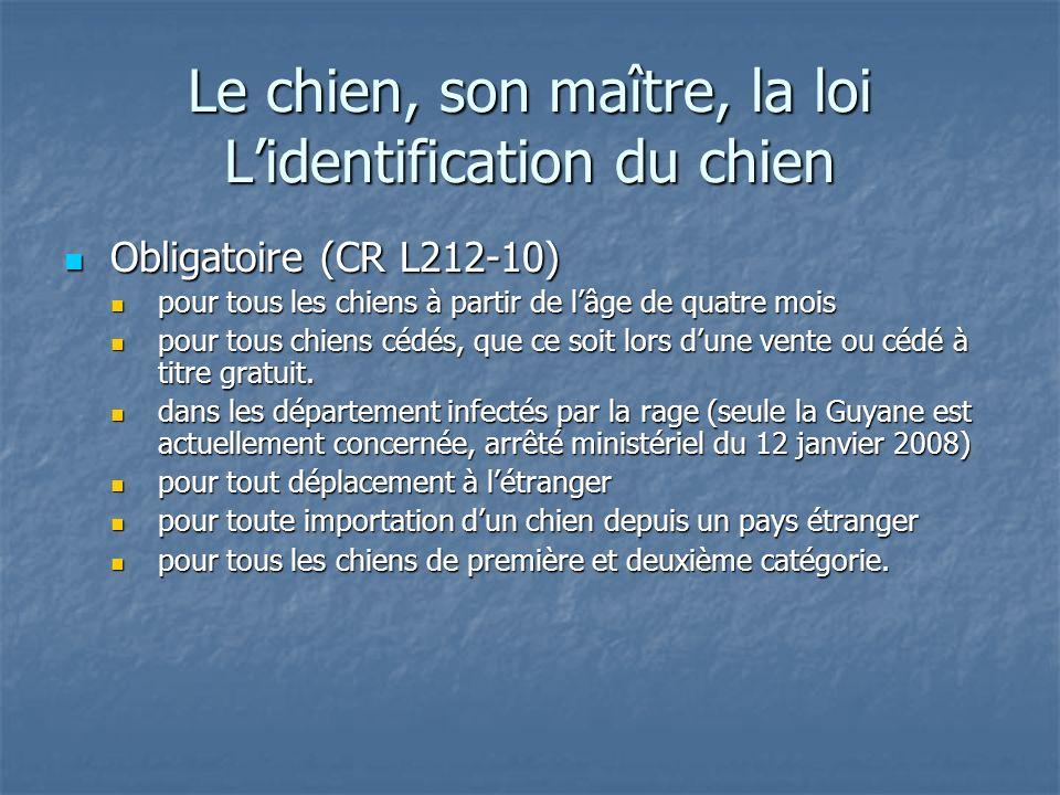 Le chien, son maître, la loi Lidentification du chien Obligatoire (CR L212-10) Obligatoire (CR L212-10) pour tous les chiens à partir de lâge de quatr
