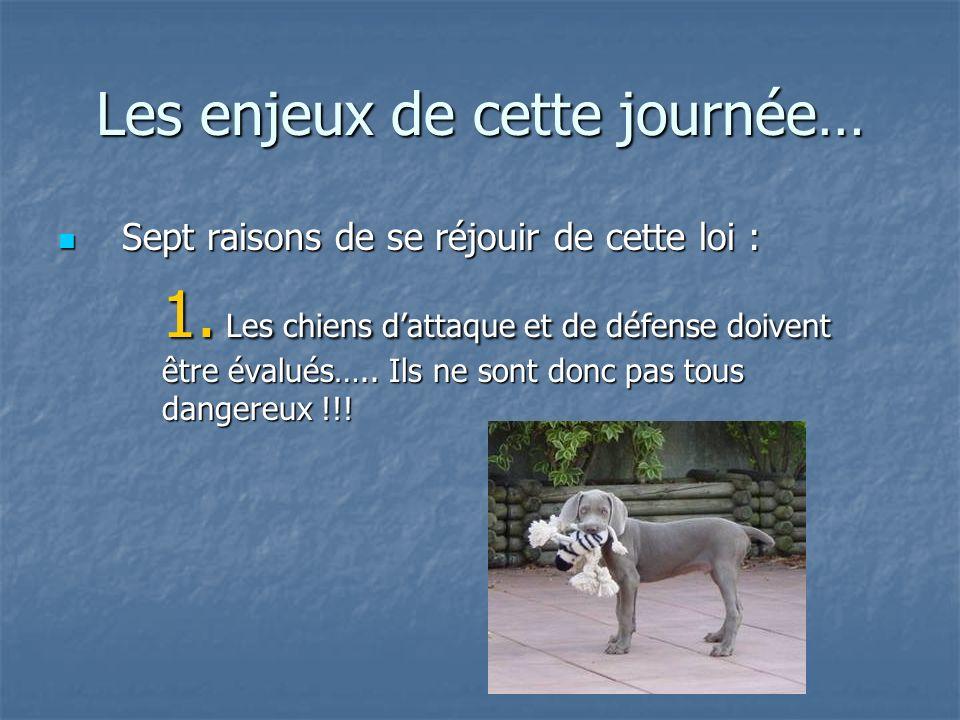 Le chien, son maître, la loi Lacquisition du chien Les autres papiers importants : Les autres papiers importants : Le pedigree Le pedigree Le passeport européen Le passeport européen