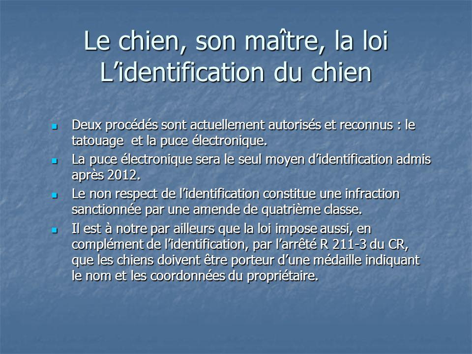 Le chien, son maître, la loi Lidentification du chien Deux procédés sont actuellement autorisés et reconnus : le tatouage et la puce électronique. Deu