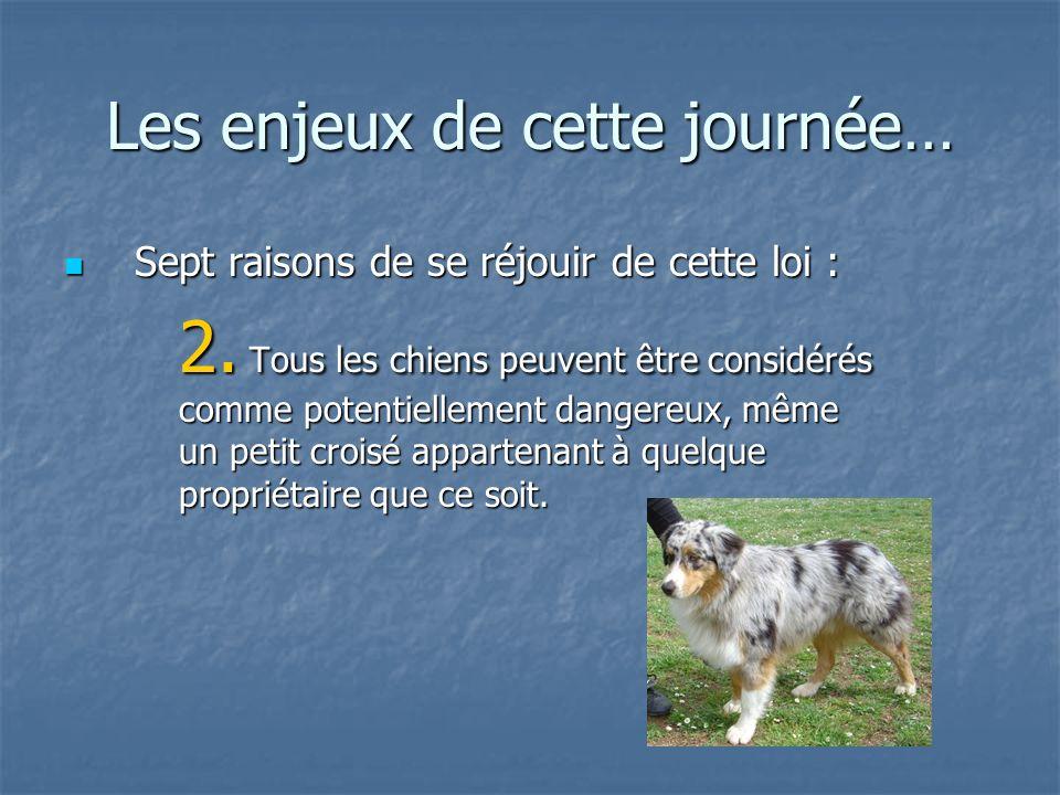 Les enjeux de cette journée… Sept raisons de se réjouir de cette loi : Sept raisons de se réjouir de cette loi : 2. Tous les chiens peuvent être consi