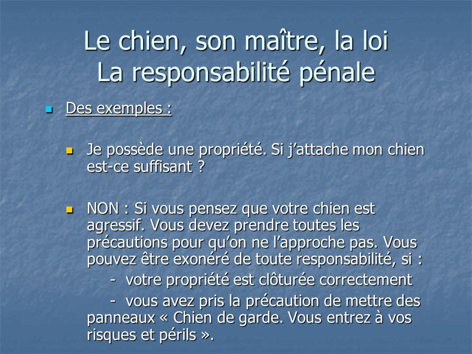 Le chien, son maître, la loi La responsabilité pénale Des exemples : Des exemples : Je possède une propriété. Si jattache mon chien est-ce suffisant ?