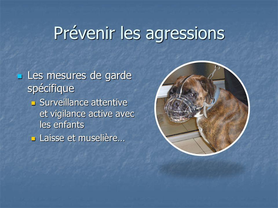 Prévenir les agressions Les mesures de garde spécifique Les mesures de garde spécifique Surveillance attentive et vigilance active avec les enfants Su