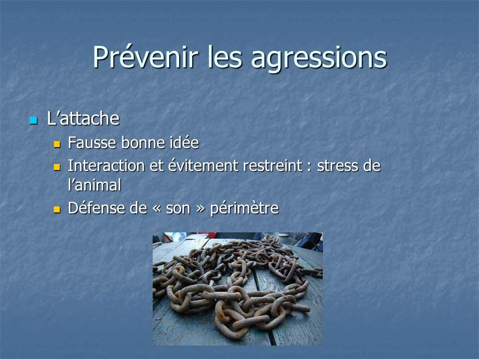 Prévenir les agressions Lattache Lattache Fausse bonne idée Fausse bonne idée Interaction et évitement restreint : stress de lanimal Interaction et év