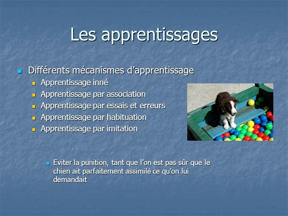 Différents mécanismes dapprentissage Différents mécanismes dapprentissage Apprentissage inné Apprentissage inné Apprentissage par association Apprenti