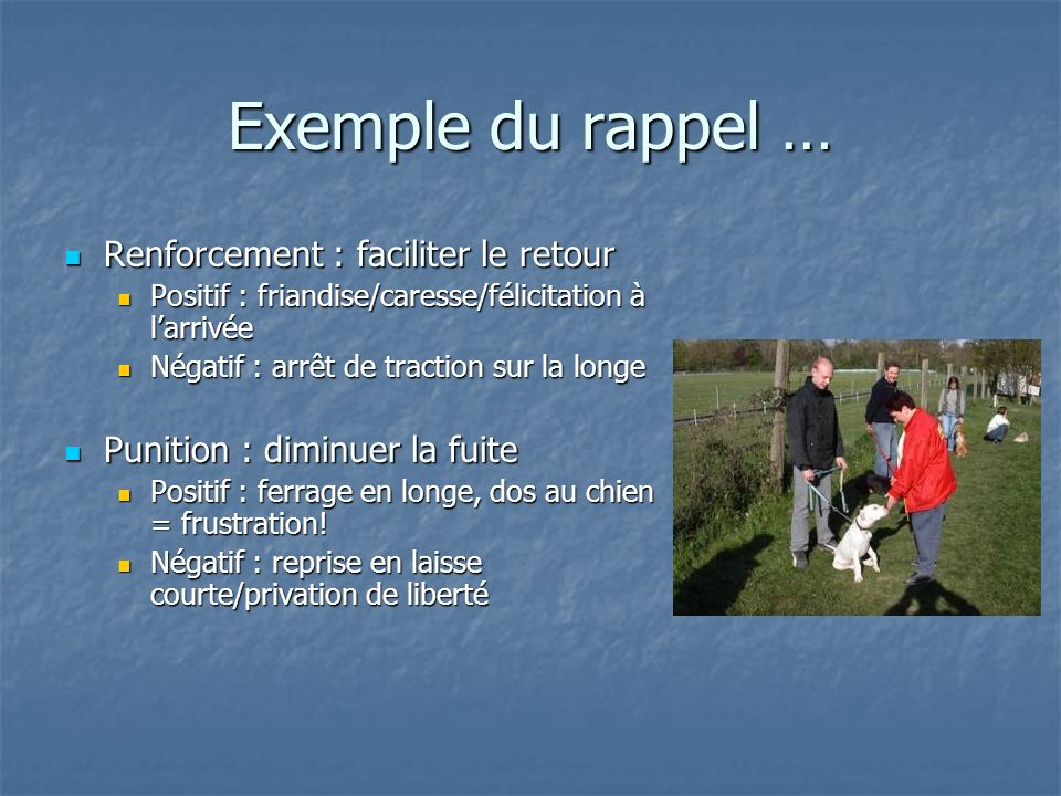 Exemple du rappel … Renforcement : faciliter le retour Renforcement : faciliter le retour Positif : friandise/caresse/félicitation à larrivée Positif