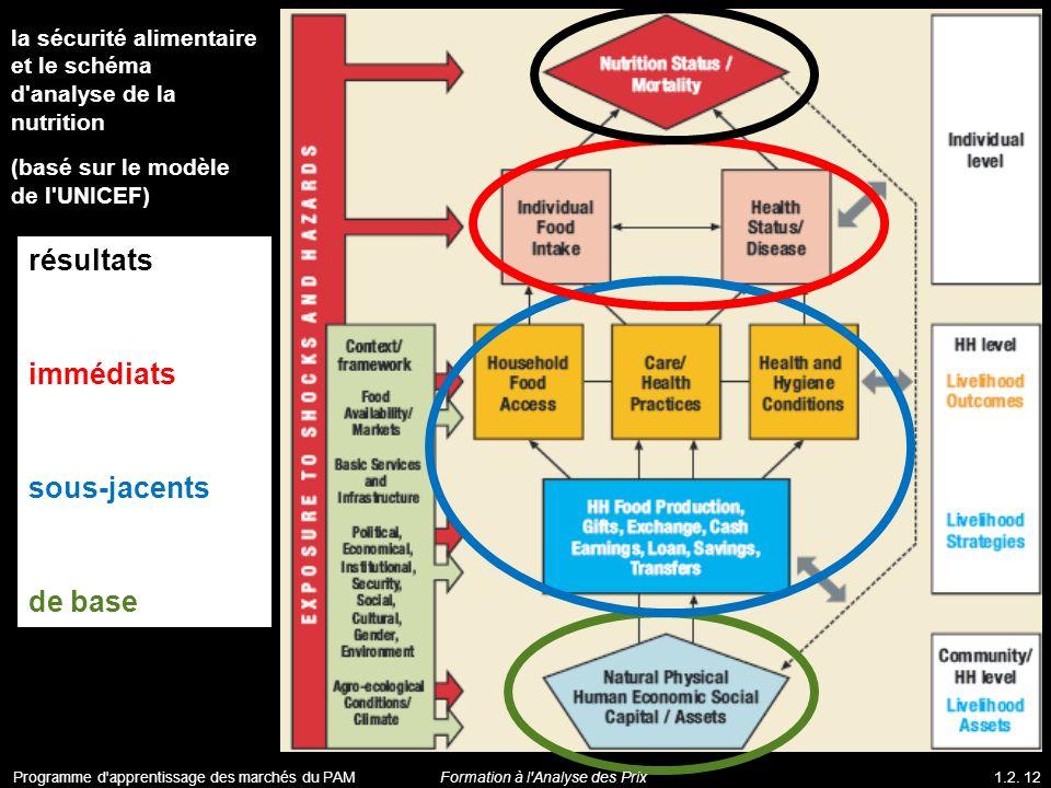 la sécurité alimentaire et le schéma d'analyse de la nutrition (basé sur le modèle de l'UNICEF) résultats immédiats sous-jacents de base Programme d'a