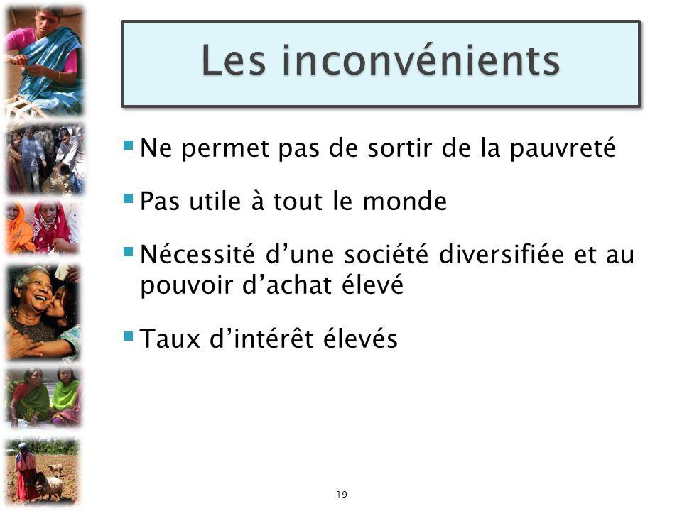 Ne permet pas de sortir de la pauvreté Pas utile à tout le monde Nécessité dune société diversifiée et au pouvoir dachat élevé Taux dintérêt élevés 19