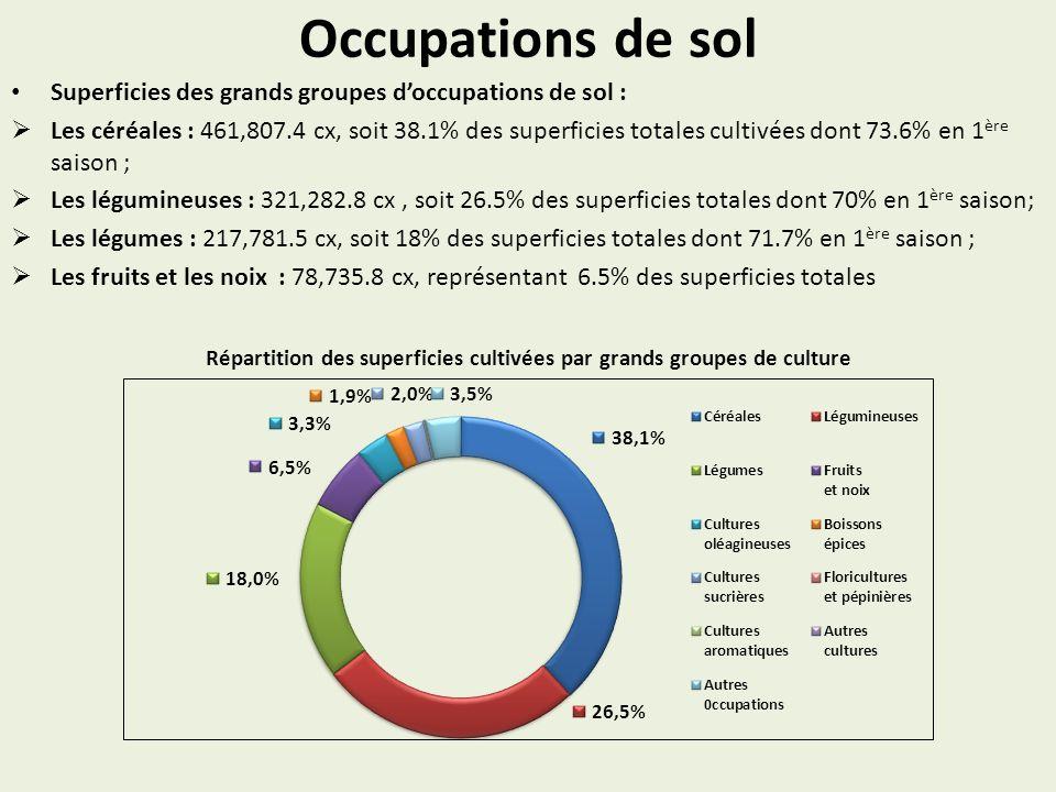 Occupations de sol Superficies des grands groupes doccupations de sol : Les céréales : 461,807.4 cx, soit 38.1% des superficies totales cultivées dont