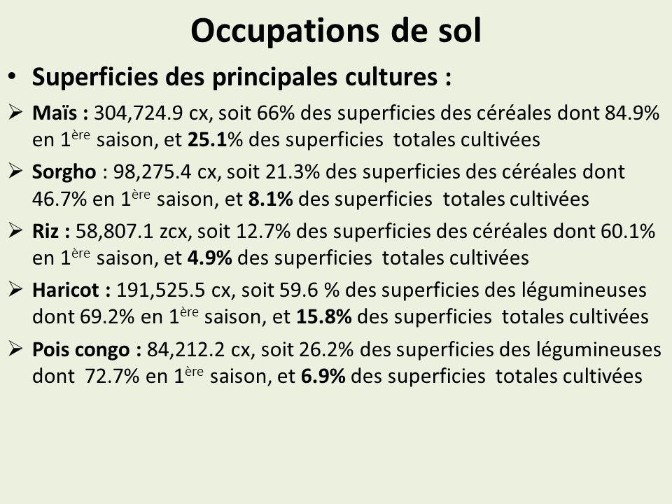 Occupations de sol Superficies des principales cultures : Maïs : 304,724.9 cx, soit 66% des superficies des céréales dont 84.9% en 1 ère saison, et 25