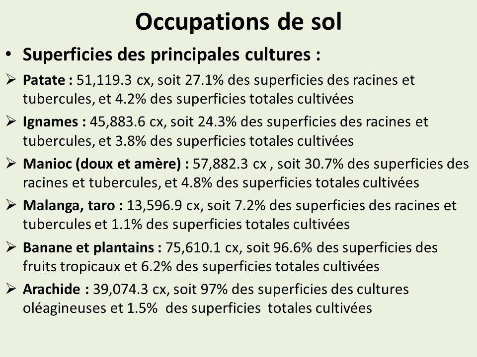 Occupations de sol Superficies des principales cultures : Patate : 51,119.3 cx, soit 27.1% des superficies des racines et tubercules, et 4.2% des supe
