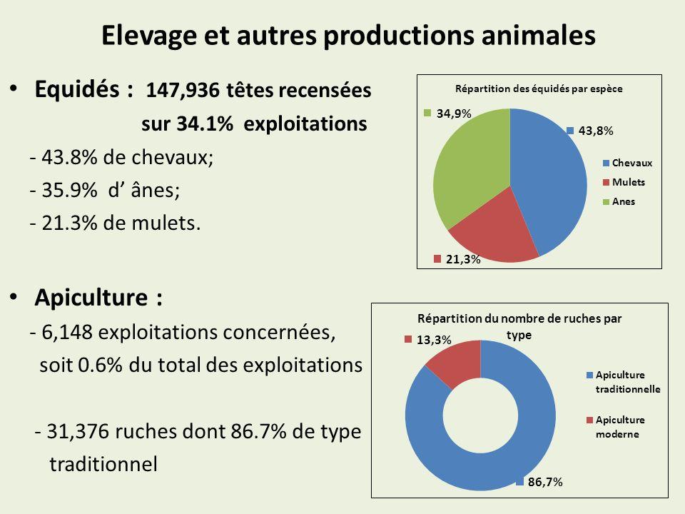 Elevage et autres productions animales Equidés : 147,936 têtes recensées sur 34.1% exploitations - 43.8% de chevaux; - 35.9% d ânes; - 21.3% de mulets