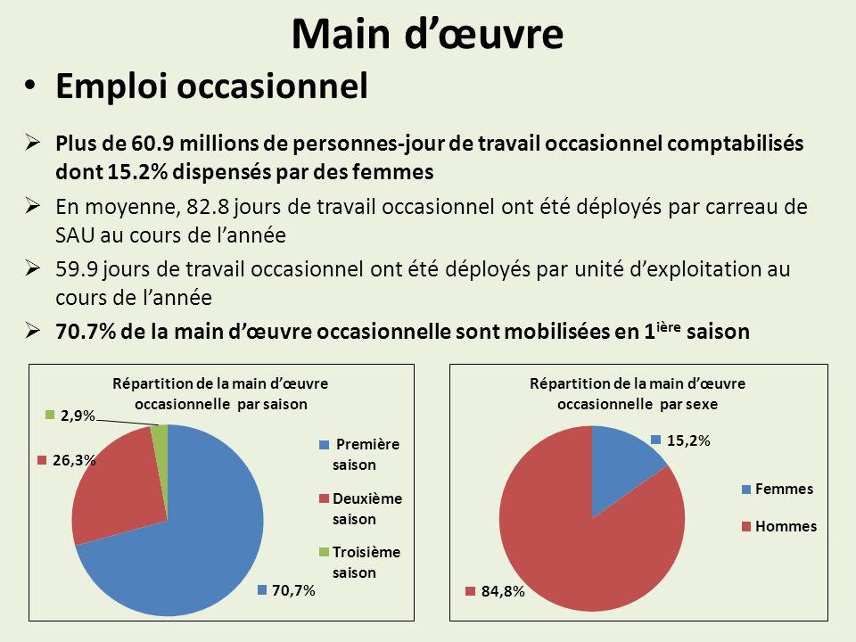 Main dœuvre Emploi occasionnel Plus de 60.9 millions de personnes-jour de travail occasionnel comptabilisés dont 15.2% dispensés par des femmes En moy