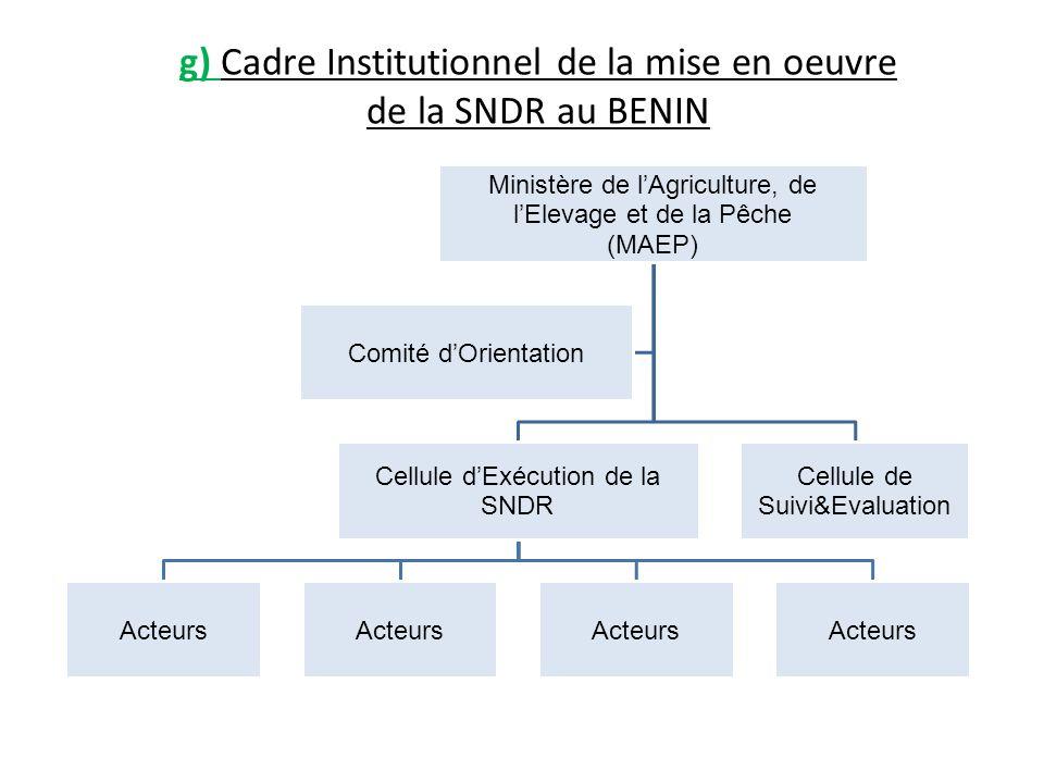 g) Cadre Institutionnel de la mise en oeuvre de la SNDR au BENIN Ministère de lAgriculture, de lElevage et de la Pêche (MAEP) Cellule dExécution de la