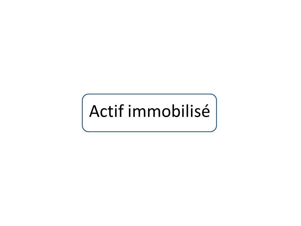 Actif immobilisé