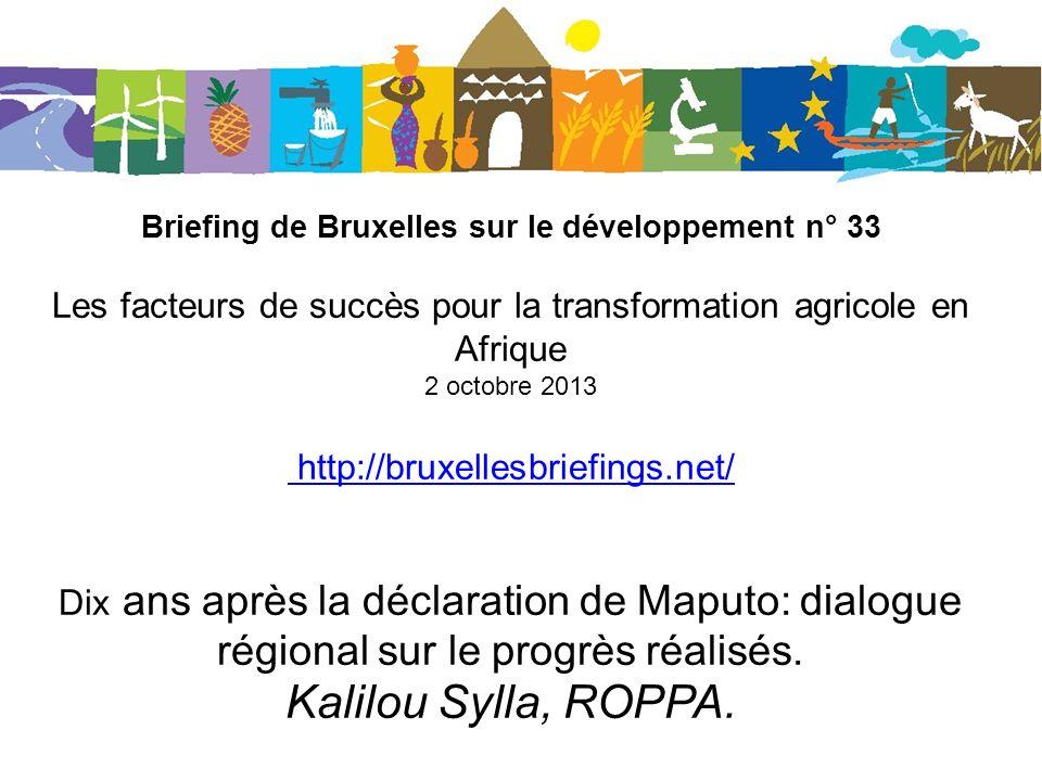 Briefing de Bruxelles sur le développement n° 33 Les facteurs de succès pour la transformation agricole en Afrique 2 octobre 2013 http://bruxellesbriefings.net/ Dix ans après la déclaration de Maputo: dialogue régional sur le progrès réalisés.