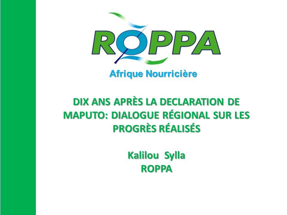 DIX ANS APRÈS LA DECLARATION DE MAPUTO: DIALOGUE RÉGIONAL SUR LES PROGRÈS RÉALISÉS Kalilou Sylla ROPPA Afrique Nourricière