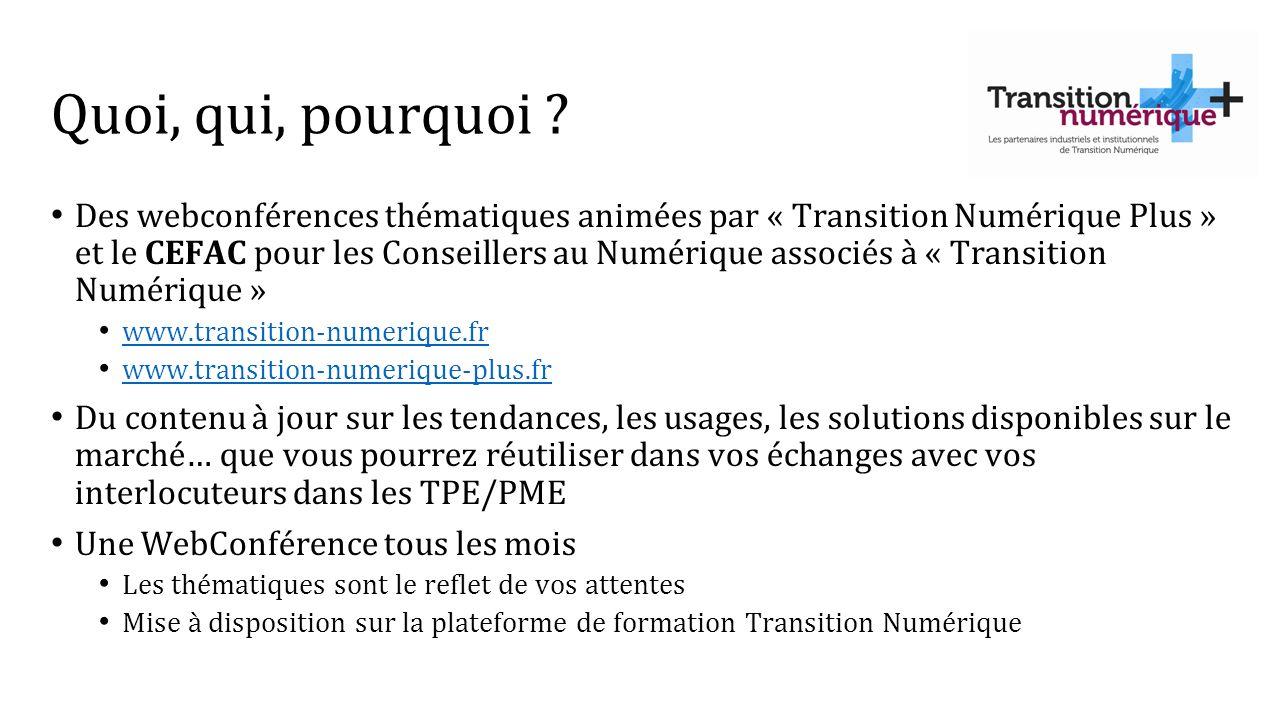 Quoi, qui, pourquoi ? Des webconférences thématiques animées par « Transition Numérique Plus » et le CEFAC pour les Conseillers au Numérique associés