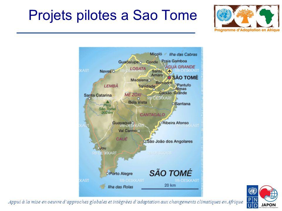 Appui à la mise en oeuvre dapproches globales et intégrées dadaptation aux changements climatiques en Afrique Projets pilotes a Sao Tome
