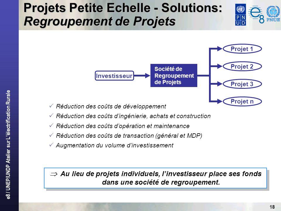 e8 / UNEP/UNDP Atelier sur L électrification Rurale 18 Au lieu de projets individuels, linvestisseur place ses fonds dans une société de regroupement.