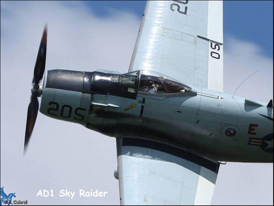 AD1 Sky Raider
