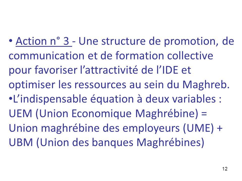 12 Action n° 3 - Une structure de promotion, de communication et de formation collective pour favoriser lattractivité de lIDE et optimiser les ressour