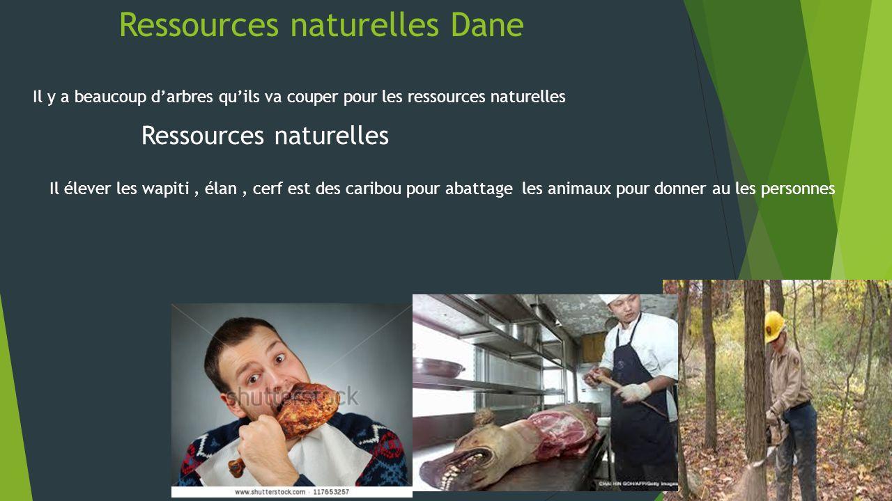 Ressources naturelles Dane Il y a beaucoup darbres quils va couper pour les ressources naturelles Ressources naturelles Il élever les wapiti, élan, ce