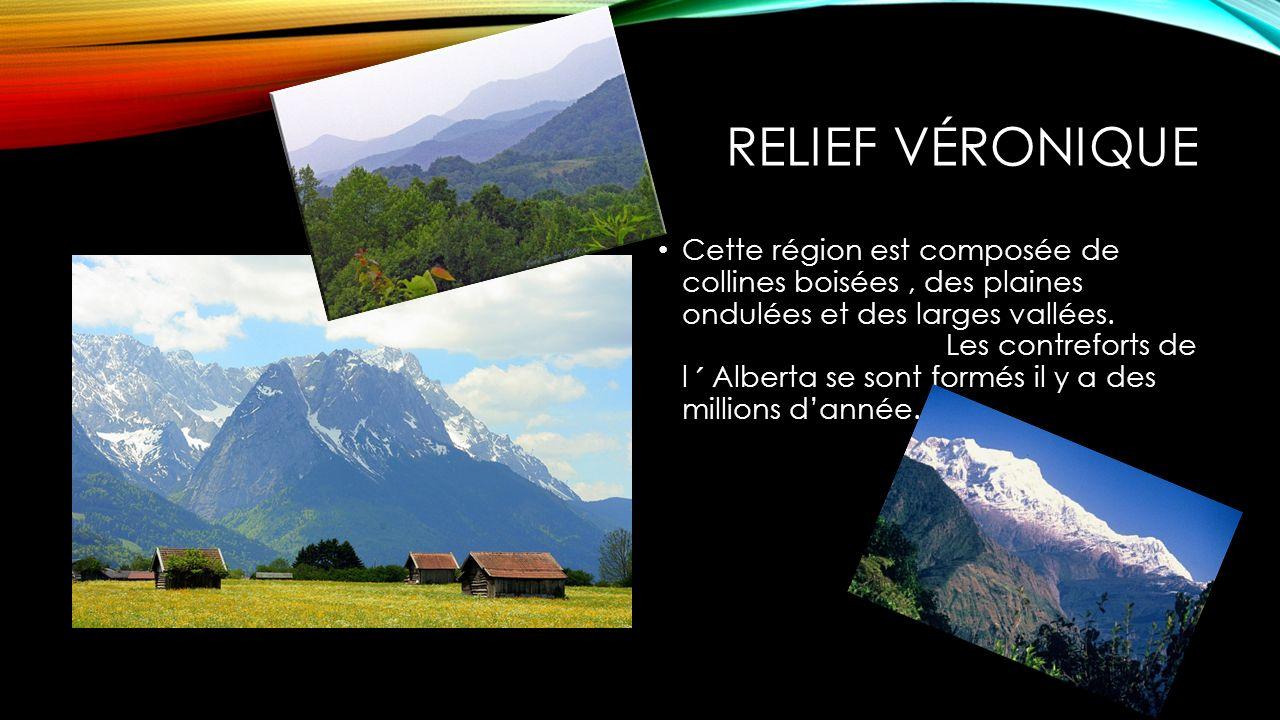 RELIEF VÉRONIQUE Cette région est composée de collines boisées, des plaines ondulées et des larges vallées. Les contreforts de l ˊ Alberta se sont for