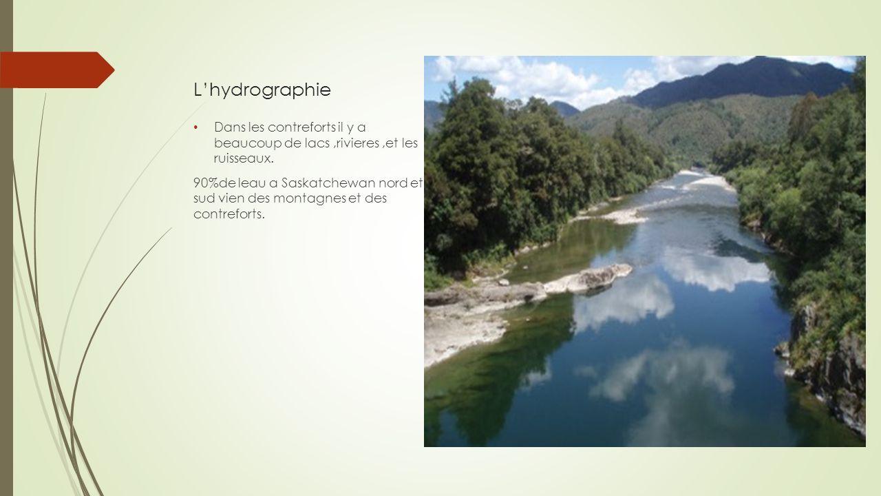 Lhydrographie Dans les contreforts il y a beaucoup de lacs,rivieres,et les ruisseaux. 90%de leau a Saskatchewan nord et sud vien des montagnes et des