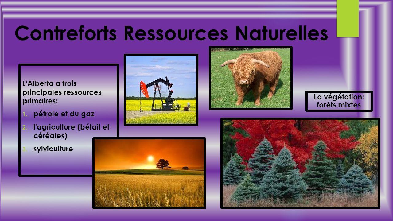 Contreforts Ressources Naturelles La végétation: forêts mixtes L'Alberta a trois principales ressources primaires: 1. pétrole et du gaz 2. l'agricultu