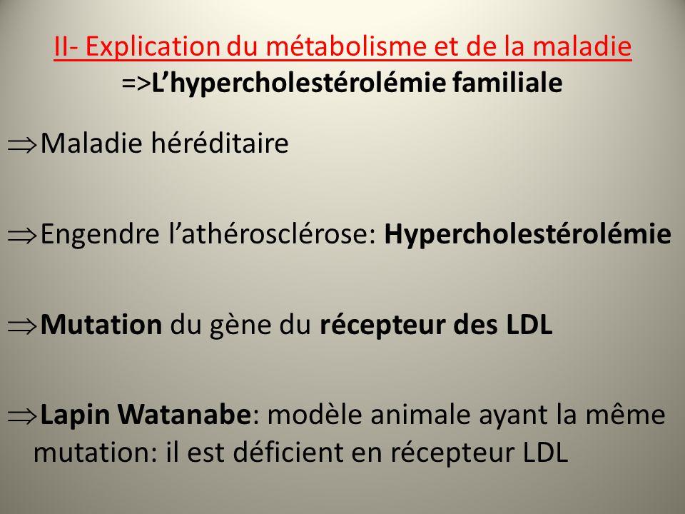 II- Explication du métabolisme et de la maladie =>Lhypercholestérolémie familiale Maladie héréditaire Engendre lathérosclérose: Hypercholestérolémie Mutation du gène du récepteur des LDL Lapin Watanabe: modèle animale ayant la même mutation: il est déficient en récepteur LDL