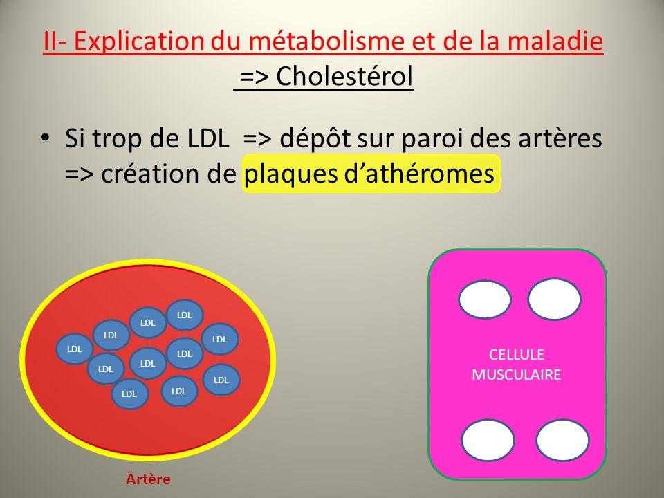 Si trop de LDL => dépôt sur paroi des artères => création de plaques dathéromes CELLULE MUSCULAIRE LDL Artère II- Explication du métabolisme et de la maladie => Cholestérol
