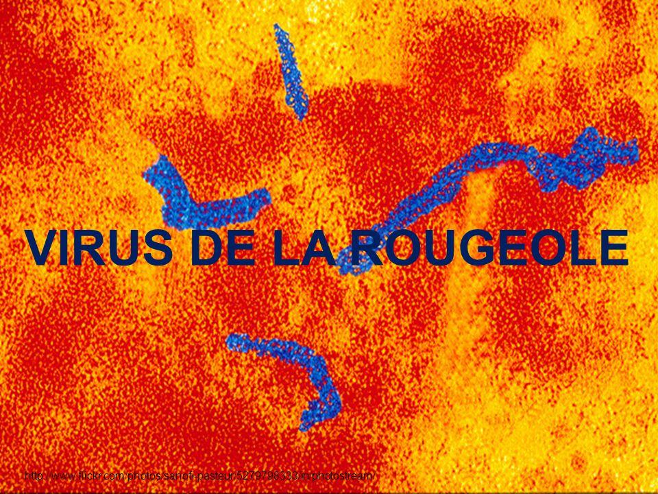 http://www.flickr.com/photos/sanofi-pasteur/5279798333/in/photostream/ VIRUS DE LA ROUGEOLE