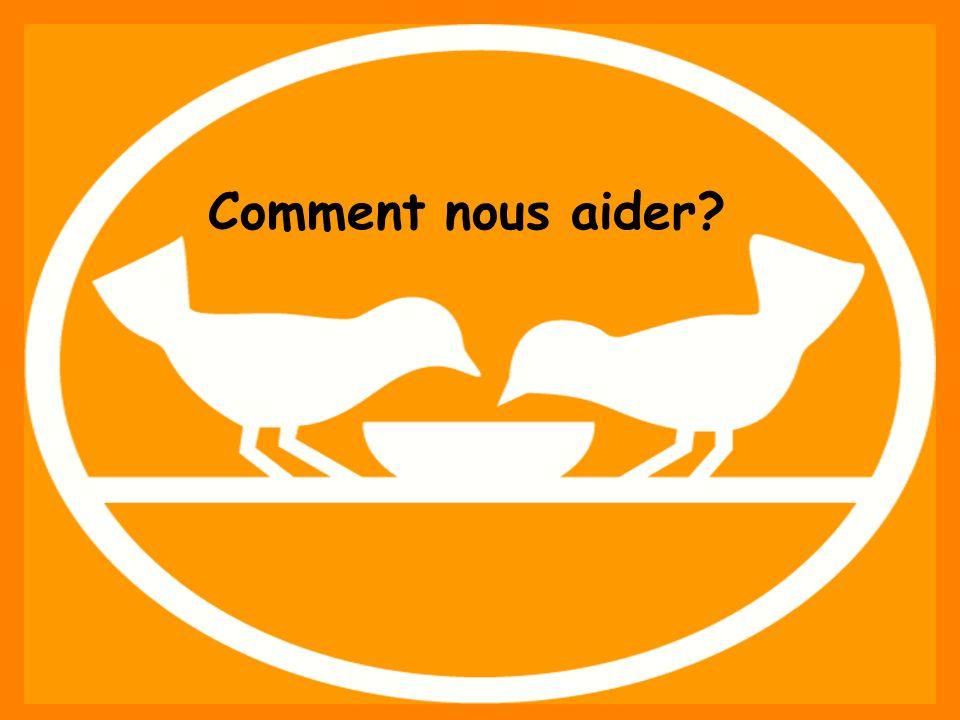 Fédération française des Banques Alimentaires – Ensemble, aidons lhomme à se restaurer. www.banquealimentaire.org Comment nous aider?
