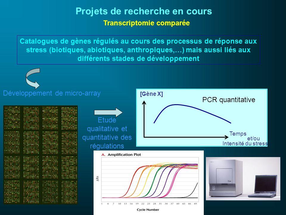 Projets de recherche en cours Transcriptomie comparée Temps [Gène X] PCR quantitative Catalogues de gènes régulés au cours des processus de réponse au