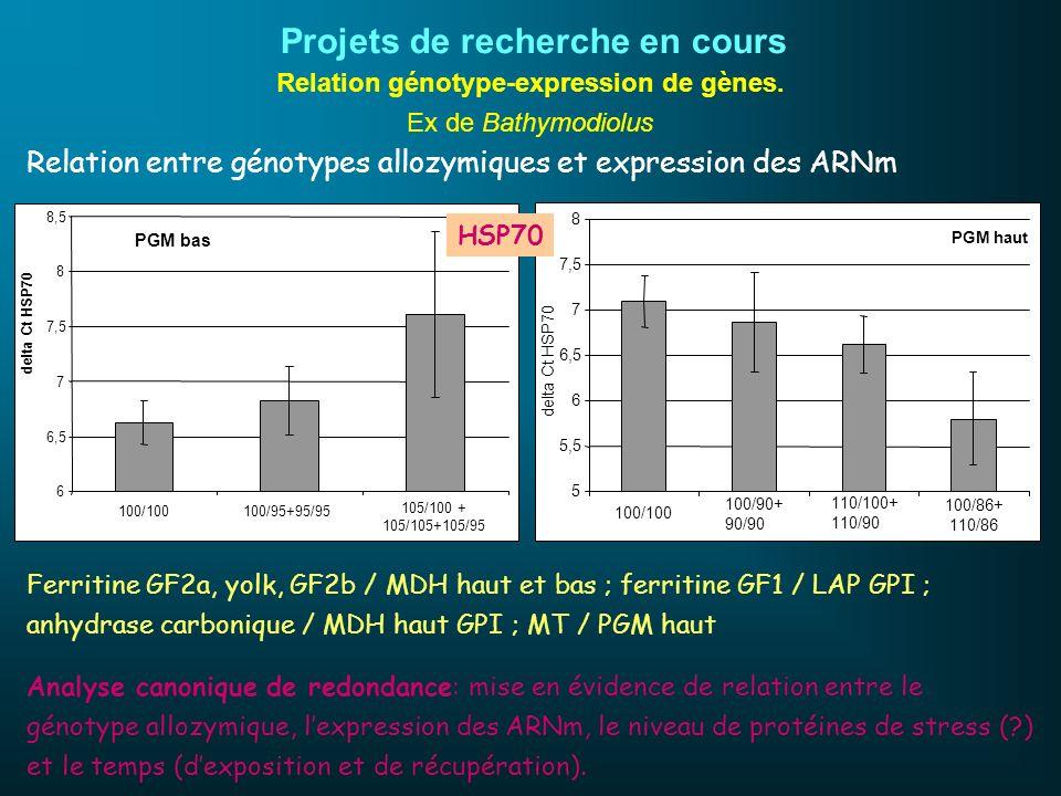 Relation génotype-expression de gènes. Ex de Bathymodiolus PGM bas 6 6,5 7 7,5 8 8,5 100/100100/95+95/95 105/100 + 105/105+105/95 delta Ct HSP70 PGM h