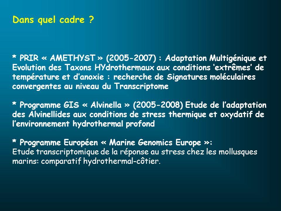 Dans quel cadre ? * PRIR « AMETHYST » (2005-2007) : Adaptation Multigénique et Evolution des Taxons HYdrothermaux aux conditions extrêmes de températu