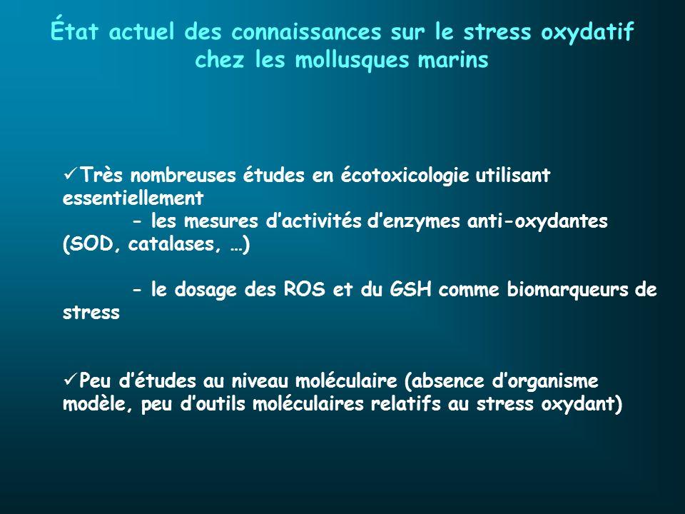 État actuel des connaissances sur le stress oxydatif chez les mollusques marins Très nombreuses études en écotoxicologie utilisant essentiellement - l
