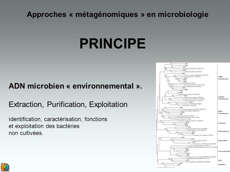 ADN microbien « environnemental ».