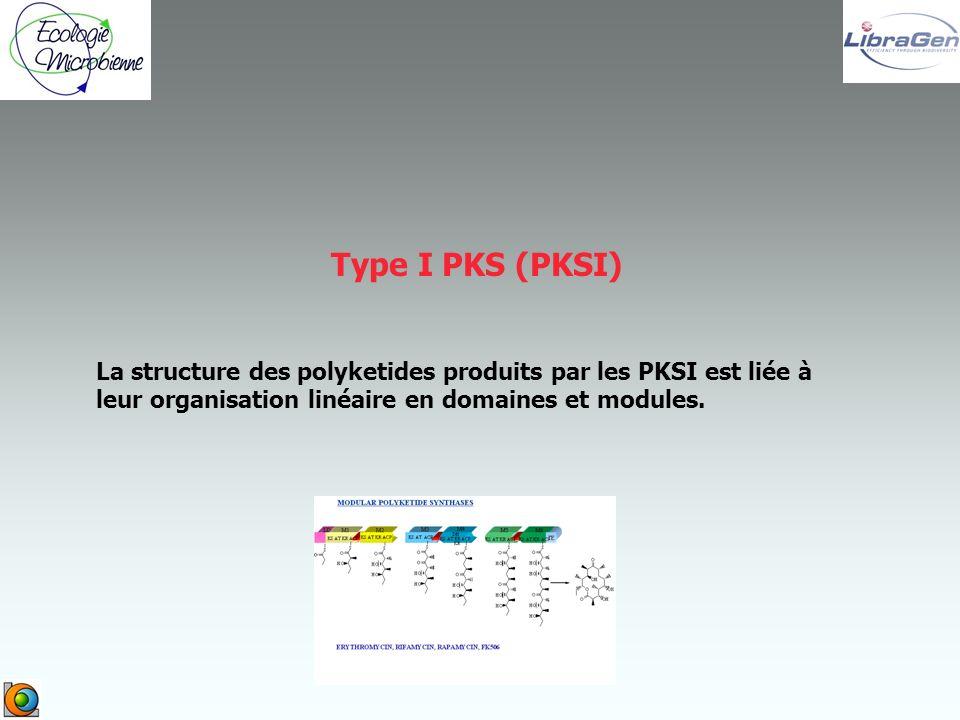 La structure des polyketides produits par les PKSI est liée à leur organisation linéaire en domaines et modules.