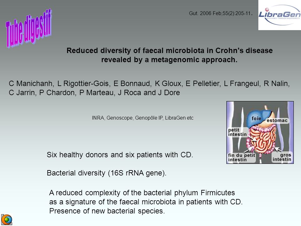 Reduced diversity of faecal microbiota in Crohn's disease revealed by a metagenomic approach. A reduced complexity of the bacterial phylum Firmicutes