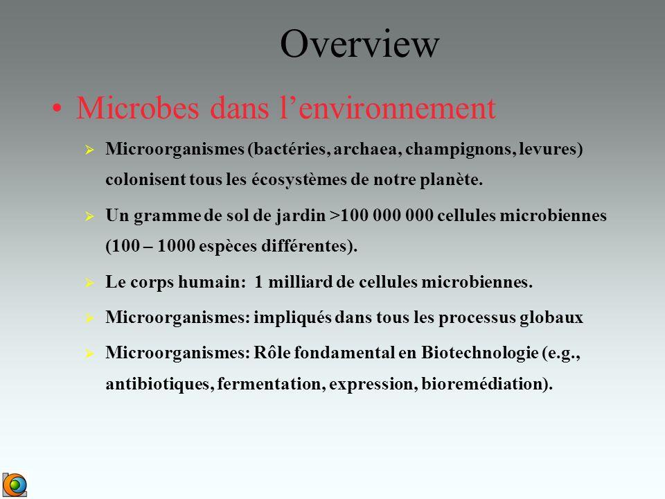 Overview Microbes dans lenvironnement Microorganismes (bactéries, archaea, champignons, levures) colonisent tous les écosystèmes de notre planète.