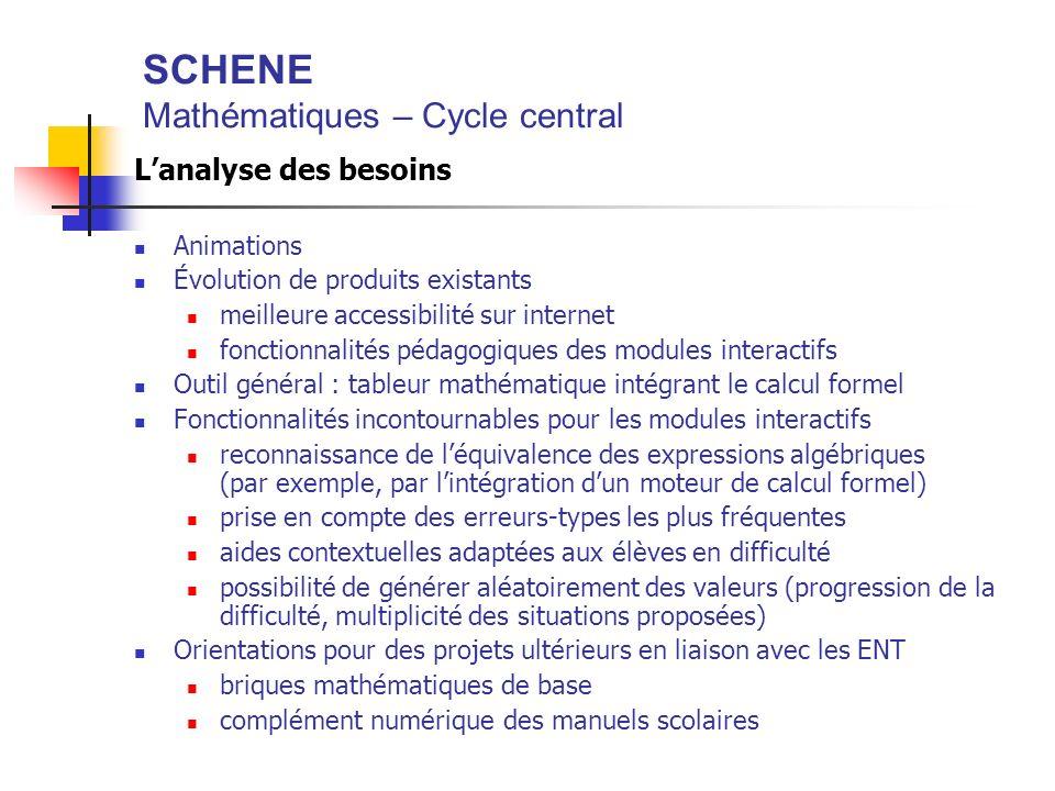 SCHENE Mathématiques – Cycle central Lanalyse des besoins Animations Évolution de produits existants meilleure accessibilité sur internet fonctionnali