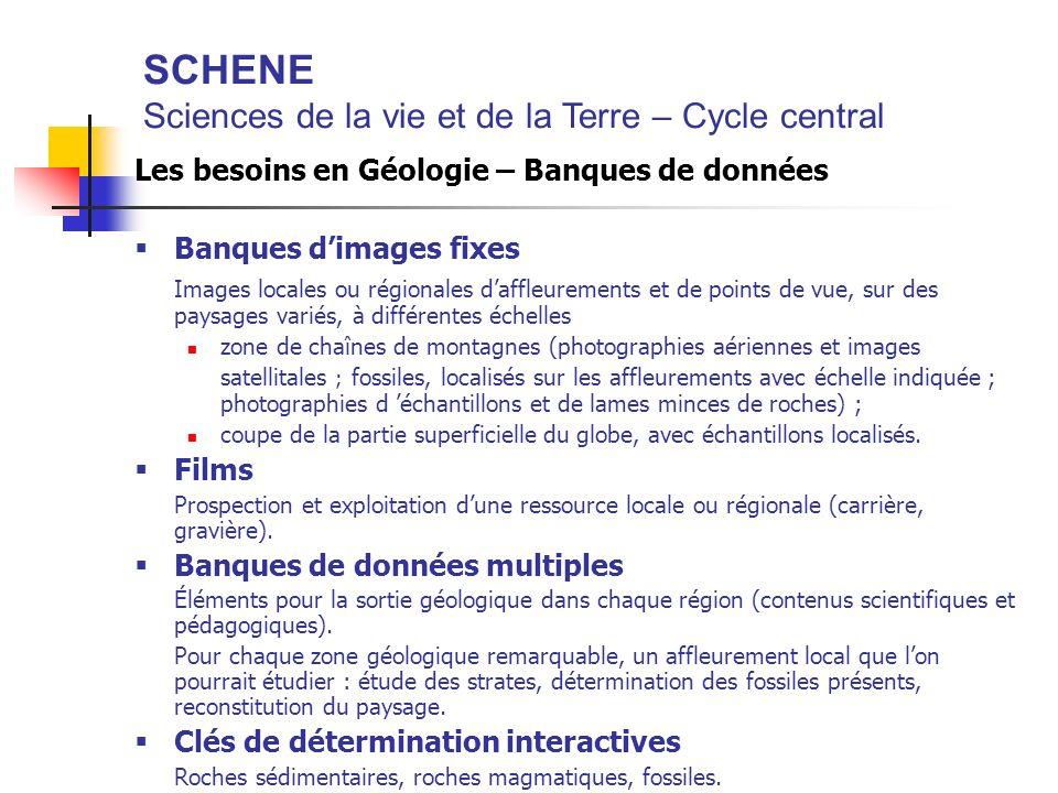 SCHENE Sciences de la vie et de la Terre – Cycle central Les besoins en Géologie – Banques de données Banques dimages fixes Images locales ou régional