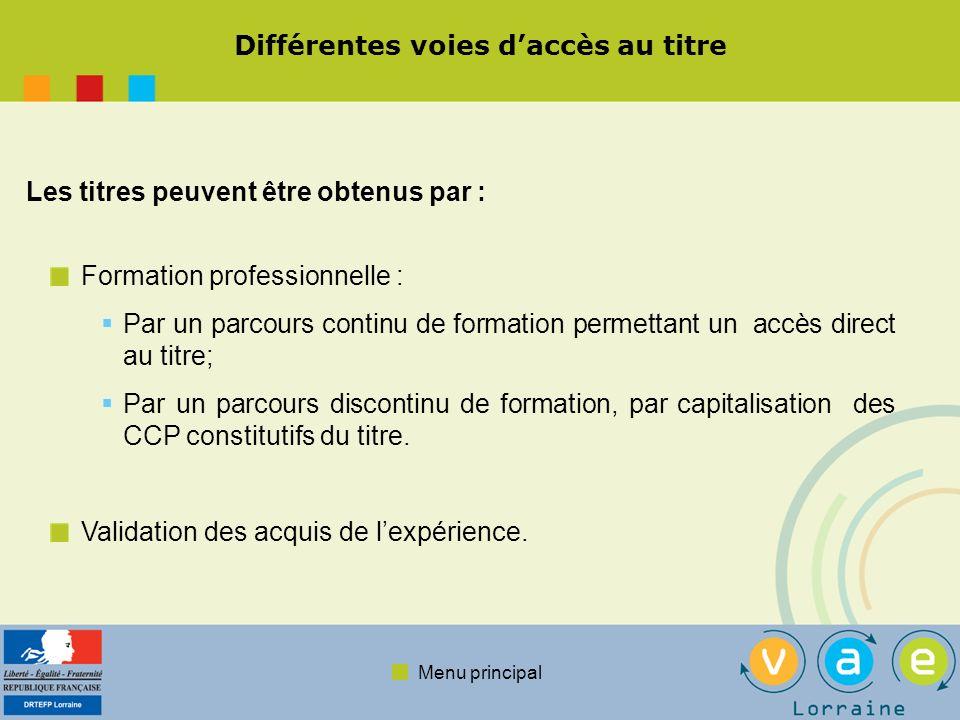 Menu principal Différentes voies daccès au titre Formation professionnelle : Par un parcours continu de formation permettant un accès direct au titre; Par un parcours discontinu de formation, par capitalisation des CCP constitutifs du titre.