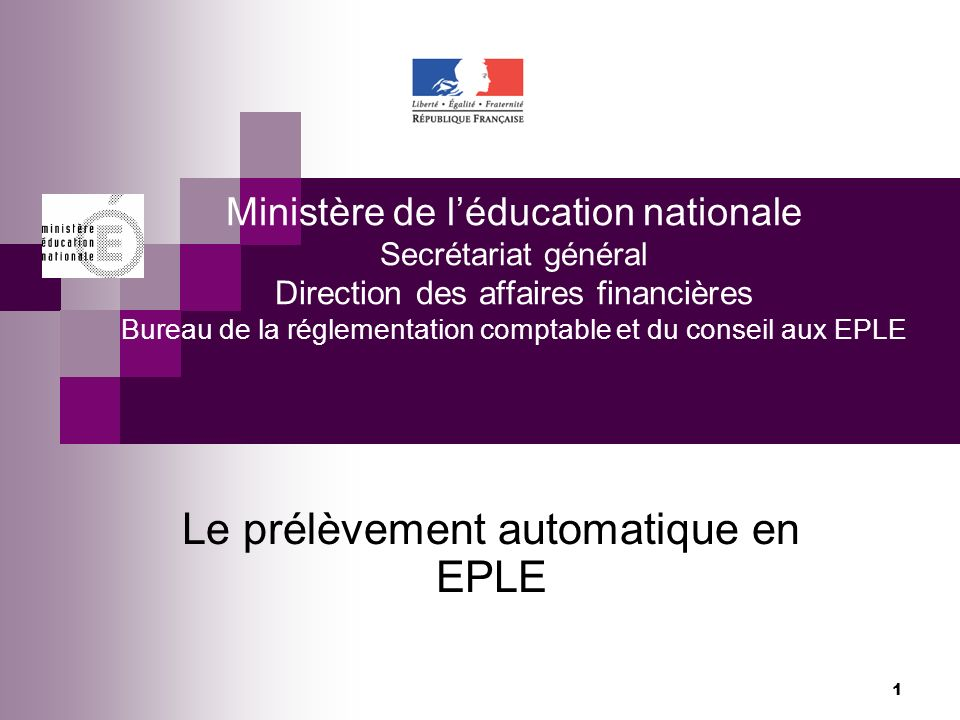 1 Ministère de léducation nationale Secrétariat général Direction des affaires financières Bureau de la réglementation comptable et du conseil aux EPL